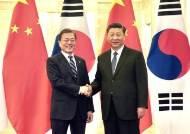 """靑 """"시진핑, 내년 상반기 방한 확정적""""…한한령 해제되나?"""