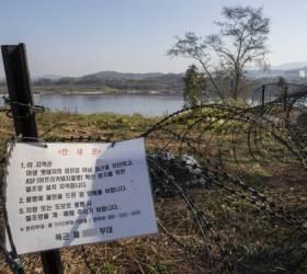 <!HS>태풍<!HE>도, 수입품도 원인 아니다···내년 봄 민통선이 두려운 돼지열병