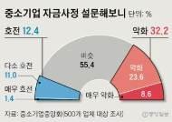"""중기 3곳중 1곳 """"돈줄 말랐다""""…새해도 현상유지 급급"""