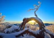 몽돌해변, 눈꽃 산… 2019 마지막 노을, 2020 첫 해 여기서