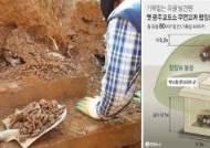"""""""땅밑 20㎝에 유골 40구, 5·18 암매장 의심"""" 검찰 수사 의뢰"""