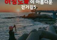[카드뉴스] 인증샷은 필수, 아침노을이 아름다운 걷기길 5