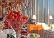 특급 호텔들이 한겨울에 '딸기 뷔페'를 여는 이유