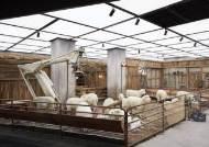 [톡톡에듀]젠틀몬스터, 중국 최고 럭셔리 백화점을 디자인하다.