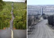 호주 산불 전·후 비교 사진, 아름다운 자연 이렇게 변했다