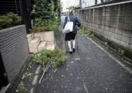 [알지RG] 다정한 71세 효부, 시부모·남편 죽였다···'노노부양' 시대 비극