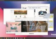 윈도7 빈자리 노리는 토종 OS…인터넷뱅킹·한글호환 걸림돌