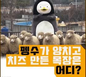 [<!HS>카드뉴스<!HE>] 펭수가 양치고 치즈 만든 목장은 어디?