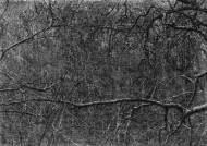 메트로폴리탄·휘트니미술관이 작품 소장한 한국사진가 이정진