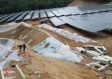 태양광 발전이라도 숲 훼손땐···<!HS>석탄<!HE><!HS>화력<!HE>보다 환경 더 망친다