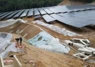 태양광 발전이라도 숲 훼손땐···석탄화력보다 환경 더 망친다