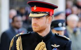 밥벌이 나선 해리 왕자, 넷플릭스行? 21세기 사랑꾼의 속사정