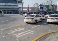 택시 1대당 인구 948명…정부 때문에 못 늘리는 세종 택시