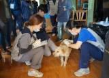건국대 수의대 학생들, 라오스에서 동물의료 봉사활동