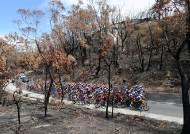 [서소문사진관] 불탄 대지를 달리는 사이클 대회, 호주 산불 비극의 현장