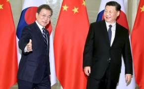 중국인 입국 금지 청원 50만명 돌파...3월 시진핑 방한도 미뤄지나