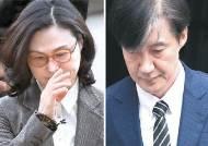 조국 전 장관 사건과 '유재수 감찰 무마 의혹' 사건 병합...재판 다음달로 미뤄져