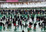 첫날 한국인 9만명, 외국인 8000명···산천어 축제는 해도되나