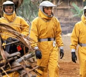 [<!HS>영화로운<!HE> <!HS>세계<!HE>] 박쥐와 원숭이, 그리고 마을봉쇄…영화 뺨치는 우한폐렴 공포