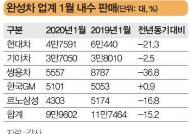 국산차 새해 첫 달 판매 '후진'…할인 경쟁 나서