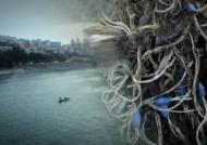 부산 감지해변 실종 다이버, 폐그물에 걸려 숨진 채 발견