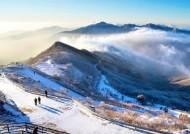 계곡은 상고대, 정상은 대설원… 소백산은 늦겨울에도 눈 천지