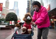 중국, 코로나19 에어로졸 전파 가능성 조건부 인정