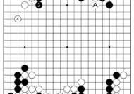 [삼성화재배 AI와 함께하는 바둑 해설] AI에 대한 반론