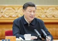 """환자 주춤하자 여유 부린 시진핑, """"中 방역 경험 세계와 나누라"""""""
