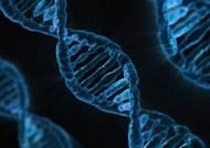 주량ㆍ탈모ㆍ조상찾기…최대 56개 항목 유전자검사 서비스 시작됐다