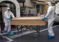 이탈리아, 유독 사망자 많은 이유…높은 '고령인구 비율' 때문?
