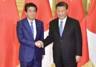 시진핑 4월 국빈방일 연기 공식발표…올림픽 이후로 미룰 듯