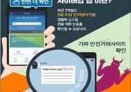 'KF94 마스크 16만장 판매' 허위 글 올려 6600만원 가로챈 30대 검거
