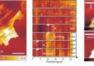 나노구조물리연구단 이영희 단장 연구팀, 상온 강자성반도체를 구현하여 반세기 과학 난제 해결