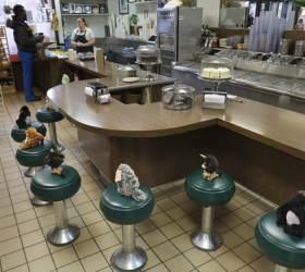 [<!HS>한컷플러스<!HE>+] 美 아이스크림 가게 의자에 인형들이 앉은 까닭은?