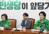 """""""민주당 2중대, 후지다"""" 민생당 대표는 '초록 점퍼' 벗었다"""
