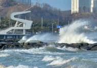 내일 전국에 태풍급 강풍 분다···선별진료소 등 관리 대비해야