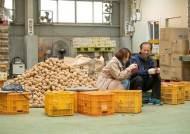 코로나 사태에 감자 팔고, 배달앱 만들고, '쇼호스트'된 지자체