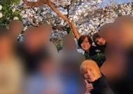 코로나 외출자제 하랬더니···아베 부인, 연예인들과 벚꽃놀이