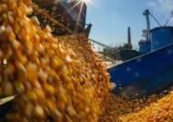 """""""4~5월 식량대란 위기""""···러·베트남·태국, 곡물 수출문 닫았다"""