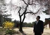 """""""2월 부산여행 안내가 마지막"""" 중국어 가이드의 막막한 일상"""