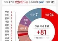 [그래픽 뉴스]코로나19 지역별 신규 확진자 지역별로 따져보니