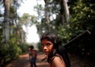 """""""아마존 원주민 몰살 될수도"""" BBC가 고발한 '몰인정 브라질'"""