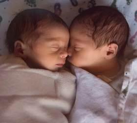 """[서소문사진관] 인도 쌍둥이 이름이 '코로나'와 '코비드', 아기 호랑이도 '코비드'...""""코로나19 고난 극복 상징으로"""""""