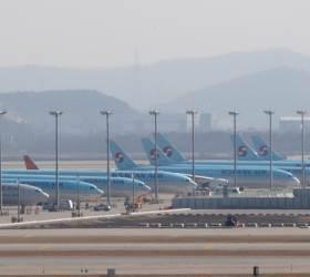 [단독] 국적기 날개 꺾이나…항공업계 상반기 피해액만 7조