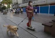 중국 도시들, 개·고양이 식용 금지···동물가치 20배 벌금부과