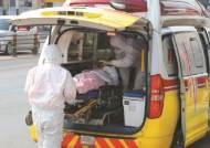 대구서 30대 여성 코로나19로 사망…국내 총 233명