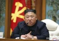 """정부, 김정은 건강이상설에 """"특이 동향없다"""" 거듭 강조"""