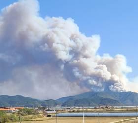 <!HS>태풍<!HE>급 강풍 부는데 산불나면 어쩌나…4월 대형 산불 많은 강원도 바짝 긴장