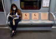 """""""750만 인구, 사망자는 4명 뿐"""" 홍콩의 코로나 방역 성공비결"""